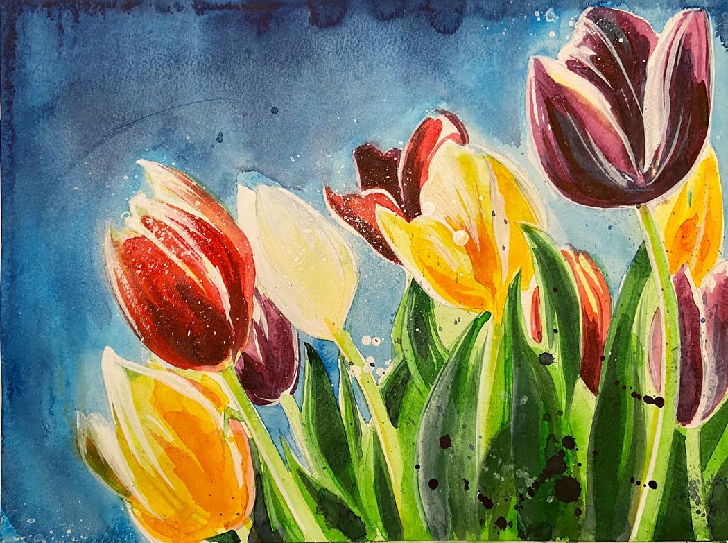 Tulpen-kl